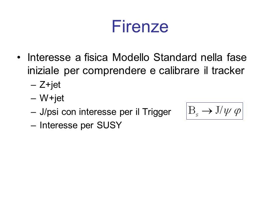 Firenze Interesse a fisica Modello Standard nella fase iniziale per comprendere e calibrare il tracker –Z+jet –W+jet –J/psi con interesse per il Trigger –Interesse per SUSY