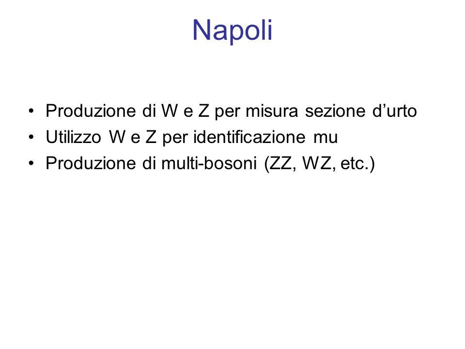 Napoli Produzione di W e Z per misura sezione durto Utilizzo W e Z per identificazione mu Produzione di multi-bosoni (ZZ, WZ, etc.)