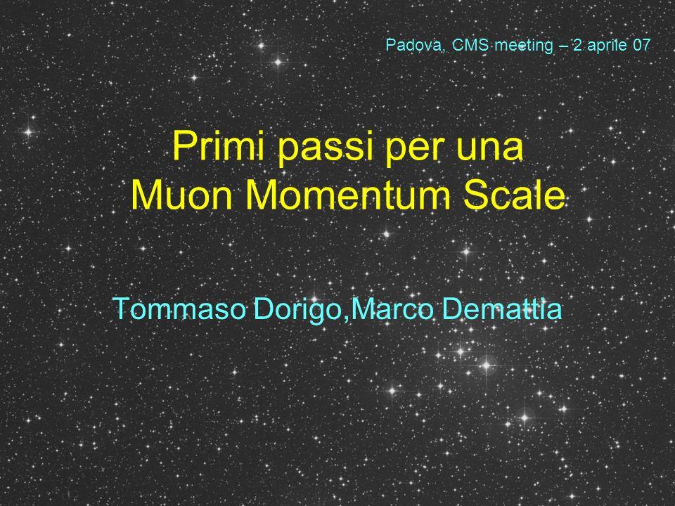 Introduzione La calibrazione della scala in momento dei muoni è fondamentale per: –Misure di massa del bosone W –Monitoring del tracker, del campo magnetico –Correzione di effetti locali nel detector –Ricostruzione di segnali ad alta massa invariante –Misure di massa del top, misure in B physics, eccetera Lo studio delle risonanze J/psi, Y, Z permette di perfezionare il Monte Carlo (scala, risoluzione) e di aumentare lefficienza degli algoritmi