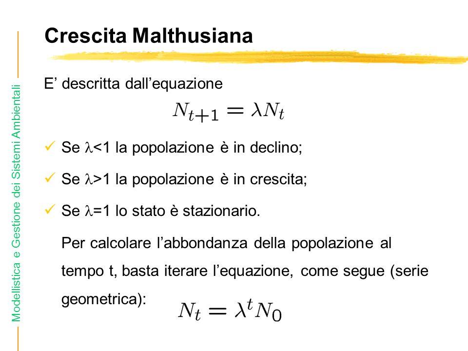 Modellistica e Gestione dei Sistemi Ambientali Crescita Malthusiana E descritta dallequazione Se <1 la popolazione è in declino; Se >1 la popolazione è in crescita; Se =1 lo stato è stazionario.