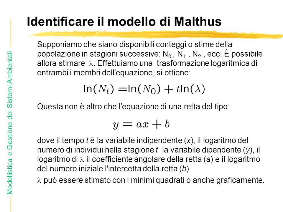 Modellistica e Gestione dei Sistemi Ambientali Identificare il modello di Malthus Supponiamo che siano disponibili conteggi o stime della popolazione in stagioni successive: N 0, N 1, N 2, ecc.