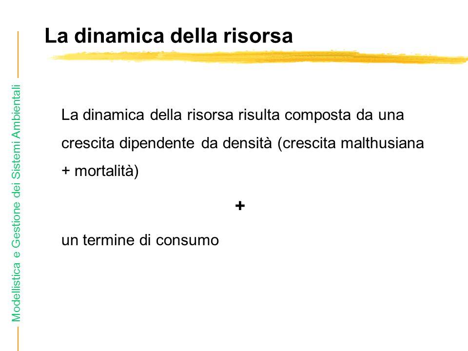 Modellistica e Gestione dei Sistemi Ambientali La dinamica della risorsa La dinamica della risorsa risulta composta da una crescita dipendente da densità (crescita malthusiana + mortalità) + un termine di consumo