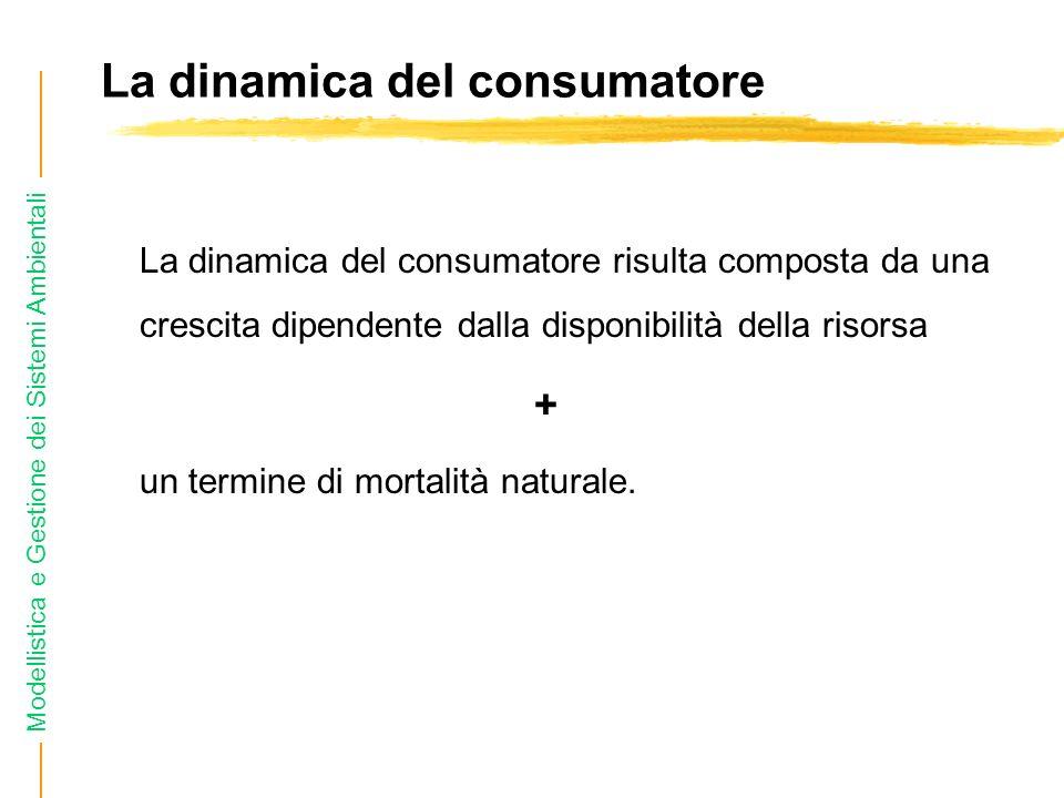 Modellistica e Gestione dei Sistemi Ambientali La dinamica del consumatore La dinamica del consumatore risulta composta da una crescita dipendente dalla disponibilità della risorsa + un termine di mortalità naturale.