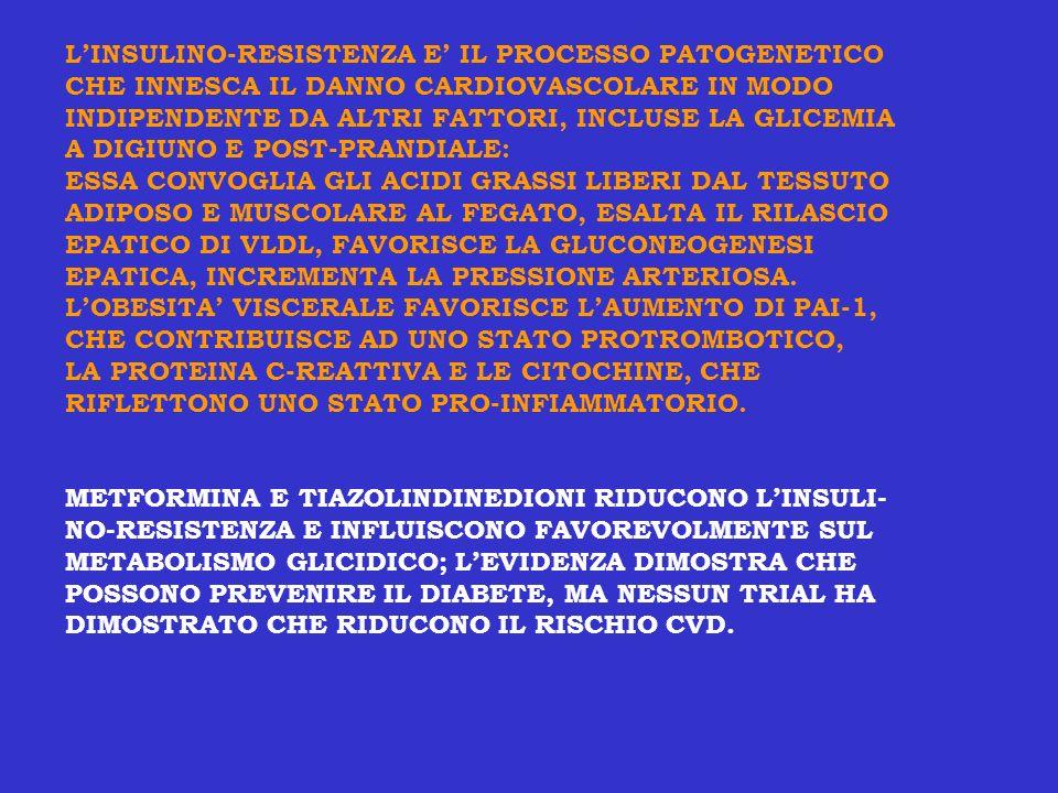 LINSULINO-RESISTENZA E IL PROCESSO PATOGENETICO CHE INNESCA IL DANNO CARDIOVASCOLARE IN MODO INDIPENDENTE DA ALTRI FATTORI, INCLUSE LA GLICEMIA A DIGI