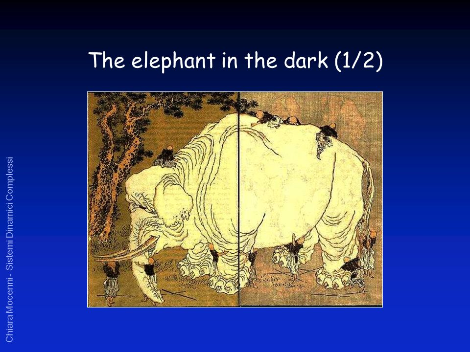Chiara Mocenni - Sistemi Dinamici Complessi The elephant in the dark (1/2)