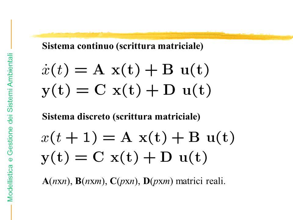 Modellistica e Gestione dei Sistemi Ambientali Sistema continuo (scrittura matriciale) Sistema discreto (scrittura matriciale) A(nxn), B(nxm), C(pxn),