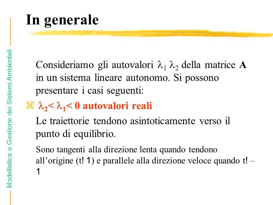 Modellistica e Gestione dei Sistemi Ambientali In generale Consideriamo gli autovalori 1 2 della matrice A in un sistema lineare autonomo. Si possono