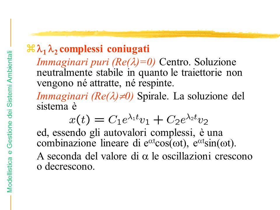 Modellistica e Gestione dei Sistemi Ambientali z 1 2 complessi coniugati Immaginari puri (Re( )=0) Centro. Soluzione neutralmente stabile in quanto le