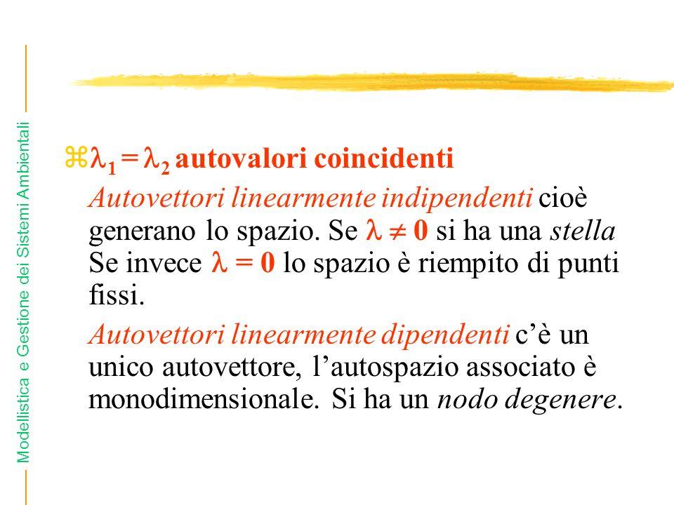 Modellistica e Gestione dei Sistemi Ambientali z 1 = 2 autovalori coincidenti Autovettori linearmente indipendenti cioè generano lo spazio. Se 0 si ha