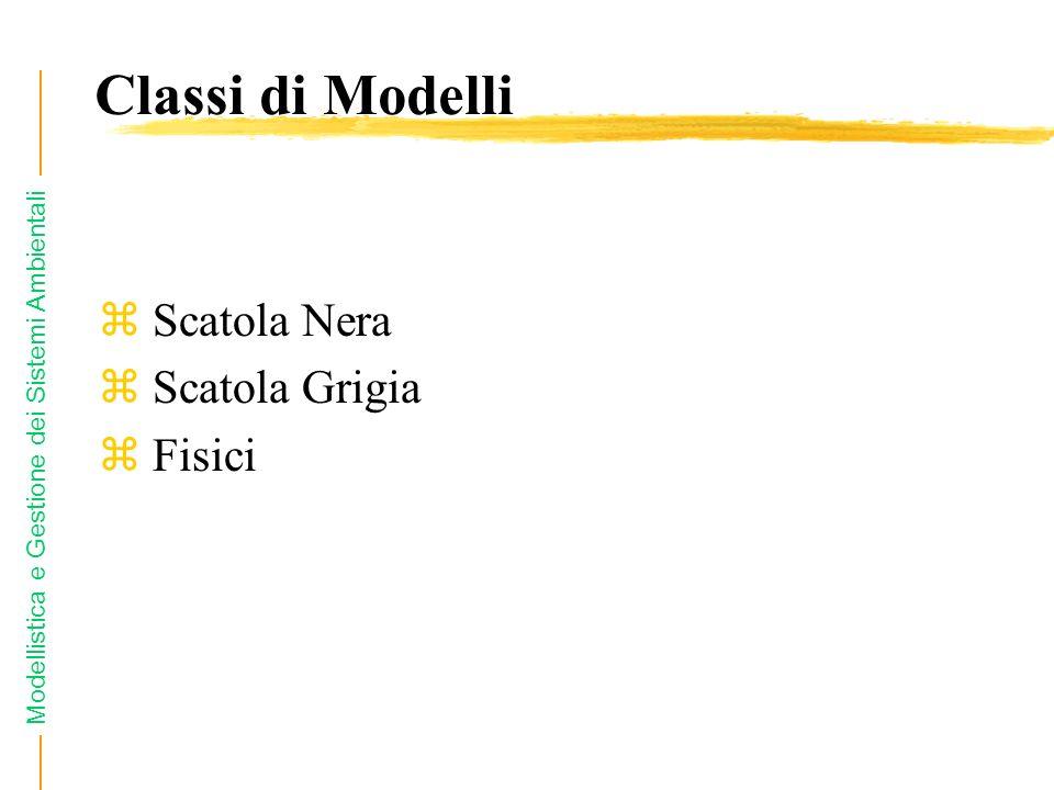 Modellistica e Gestione dei Sistemi Ambientali z Scatola Nera z Scatola Grigia z Fisici Classi di Modelli