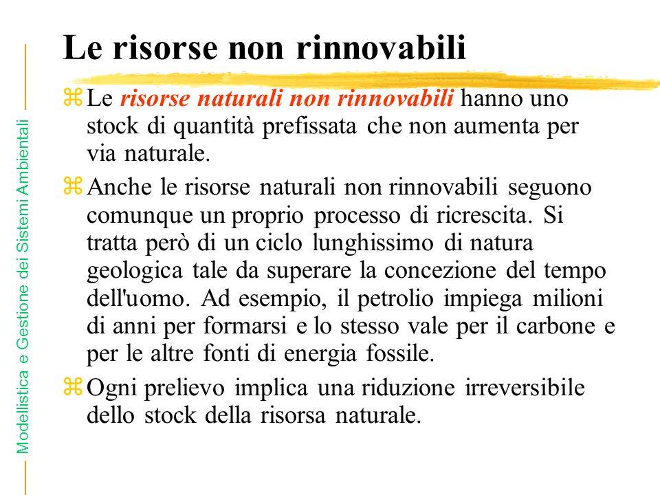 Modellistica e Gestione dei Sistemi Ambientali Le risorse non rinnovabili zLe risorse naturali non rinnovabili hanno uno stock di quantità prefissata che non aumenta per via naturale.