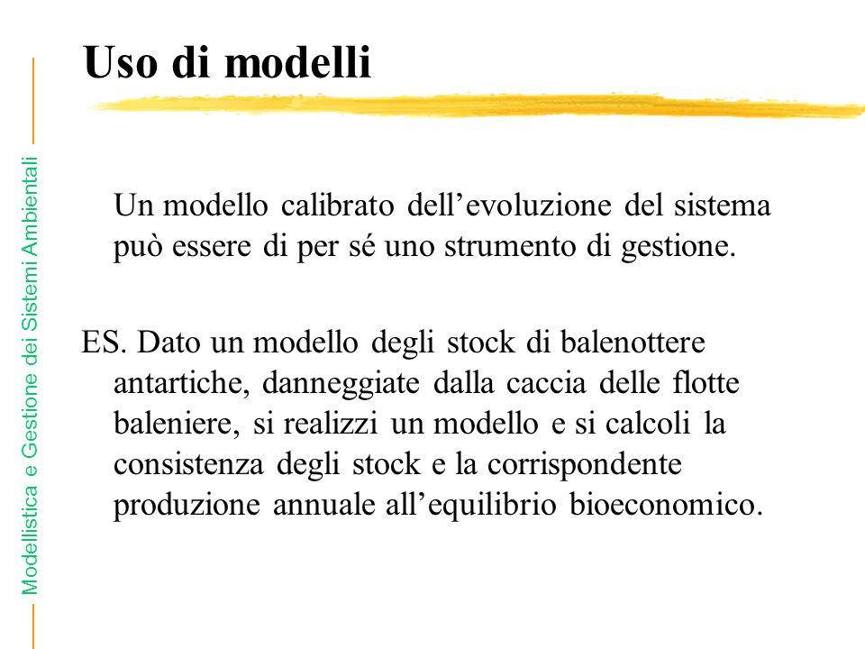 Modellistica e Gestione dei Sistemi Ambientali Uso di modelli Un modello calibrato dellevoluzione del sistema può essere di per sé uno strumento di gestione.