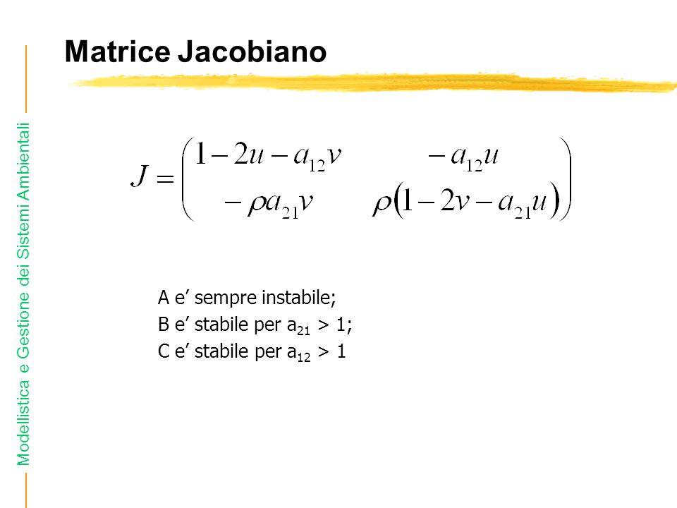Modellistica e Gestione dei Sistemi Ambientali Matrice Jacobiano A e sempre instabile; B e stabile per a 21 > 1; C e stabile per a 12 > 1