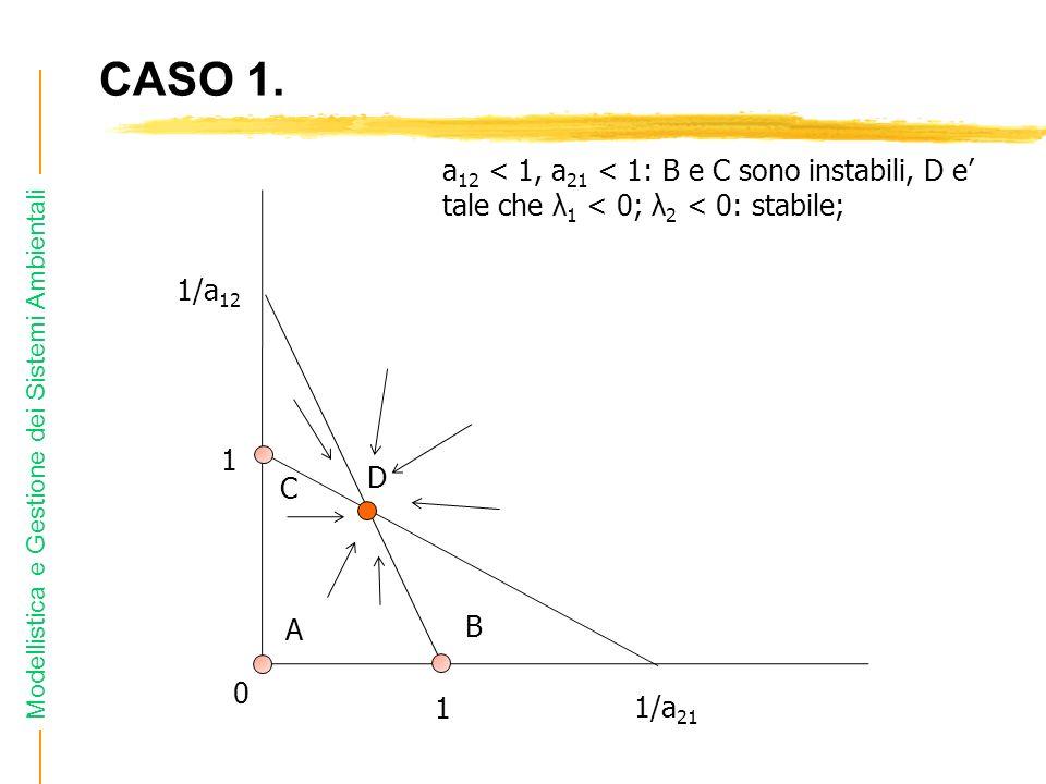 Modellistica e Gestione dei Sistemi Ambientali CASO 1. C 1 1/a 12 1/a 21 0 a 12 < 1, a 21 < 1: B e C sono instabili, D e tale che λ 1 < 0; λ 2 < 0: st