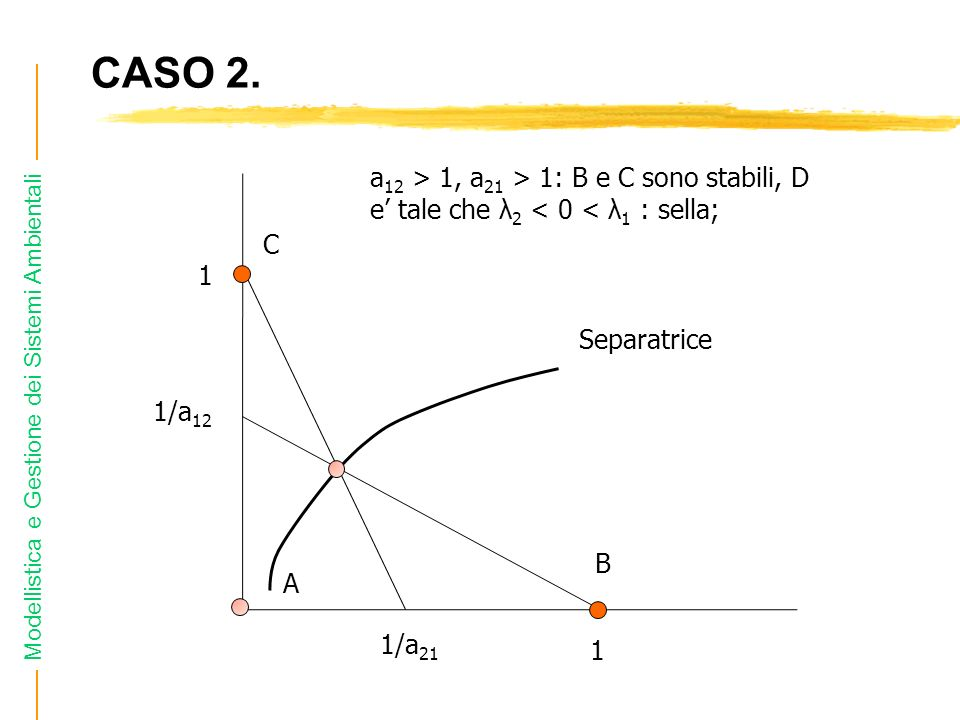 Modellistica e Gestione dei Sistemi Ambientali CASO 2. 1/a 12 1/a 21 1 1 Separatrice a 12 > 1, a 21 > 1: B e C sono stabili, D e tale che λ 2 < 0 < λ