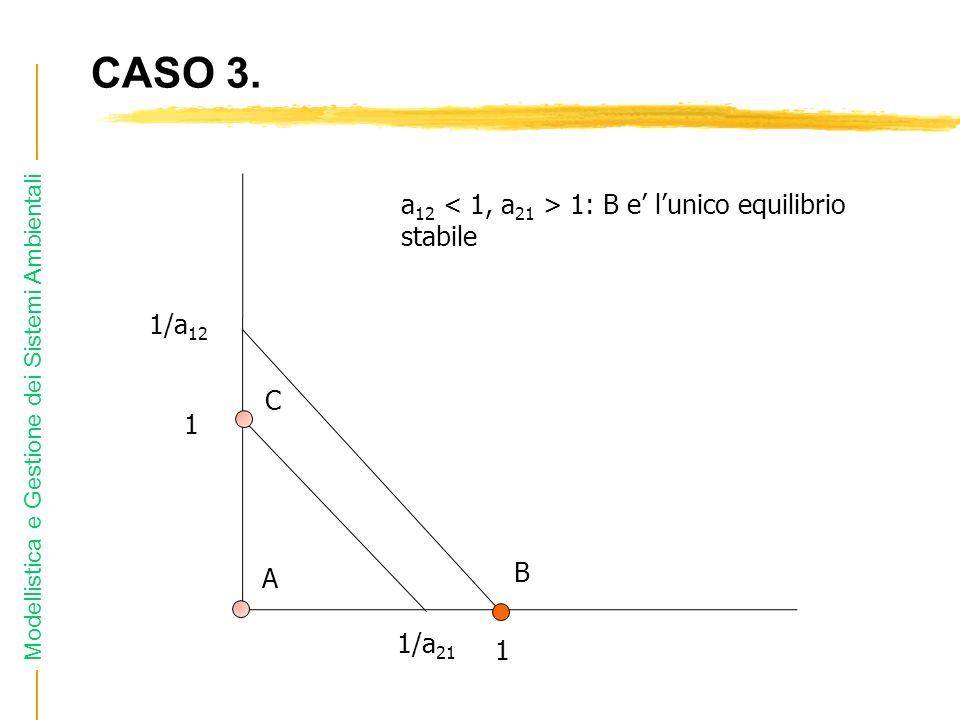 Modellistica e Gestione dei Sistemi Ambientali CASO 3. 1/a 12 1 1/a 21 1 a 12 1: B e lunico equilibrio stabile A B C