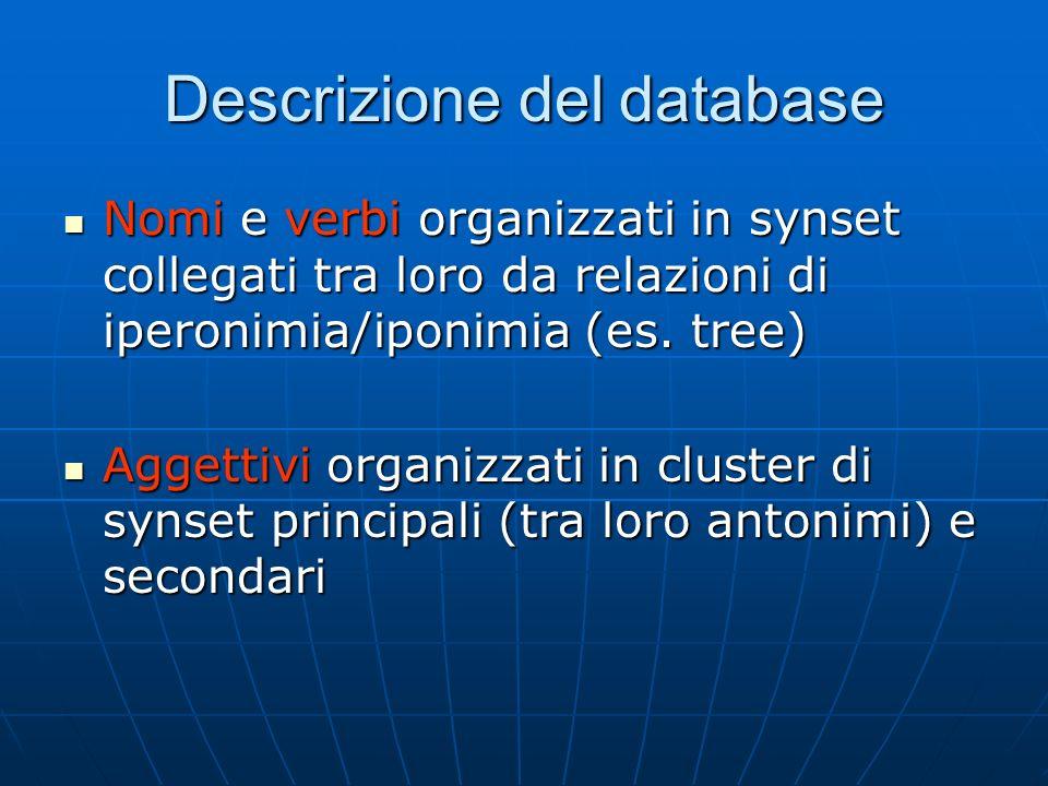 Descrizione del database Nomi e verbi organizzati in synset collegati tra loro da relazioni di iperonimia/iponimia (es.