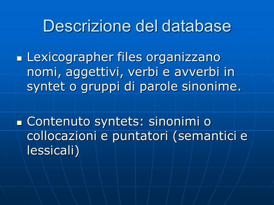 Descrizione del database Lexicographer files organizzano nomi, aggettivi, verbi e avverbi in syntet o gruppi di parole sinonime.