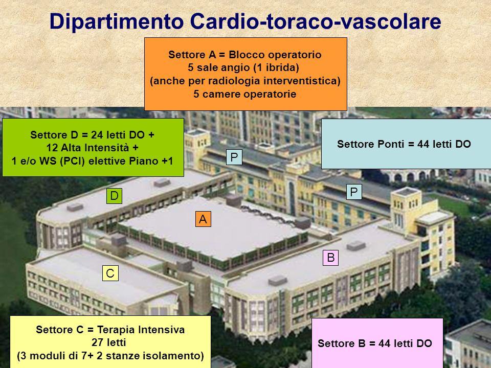 Dipartimento Cardio-toraco-vascolare A B D C P P Settore A = Blocco operatorio 5 sale angio (1 ibrida) (anche per radiologia interventistica) 5 camere