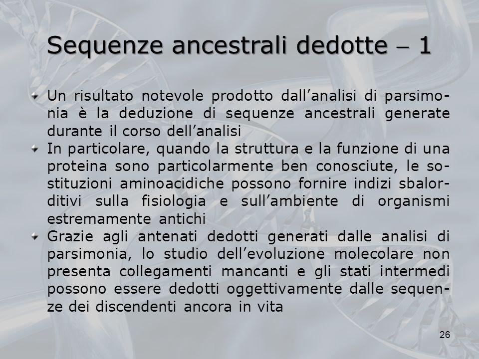 Sequenze ancestrali dedotte 1 Un risultato notevole prodotto dallanalisi di parsimo- nia è la deduzione di sequenze ancestrali generate durante il cor