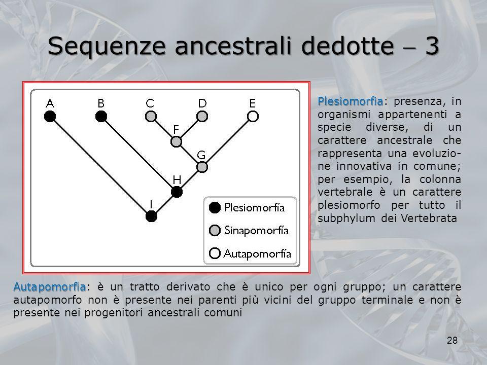 Sequenze ancestrali dedotte 3 28 Plesiomorfia Plesiomorfia: presenza, in organismi appartenenti a specie diverse, di un carattere ancestrale che rappr