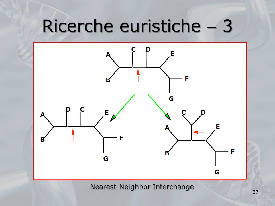 Ricerche euristiche 3 37 Nearest Neighbor Interchange