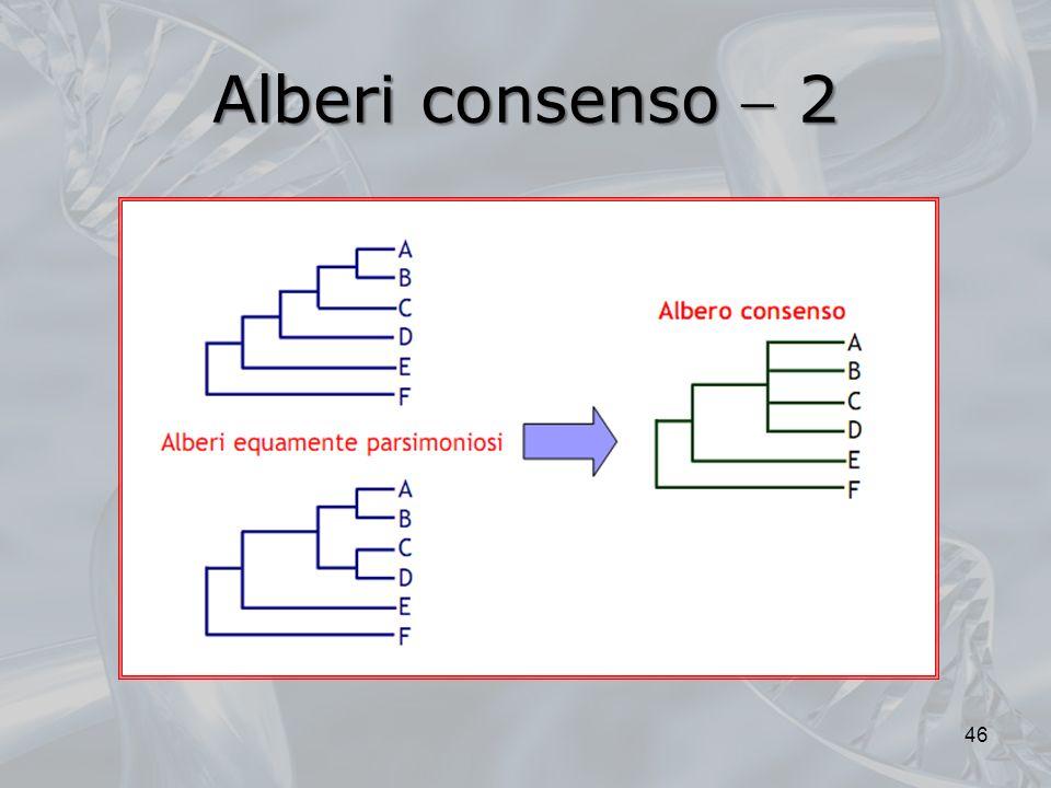 Alberi consenso 2 46