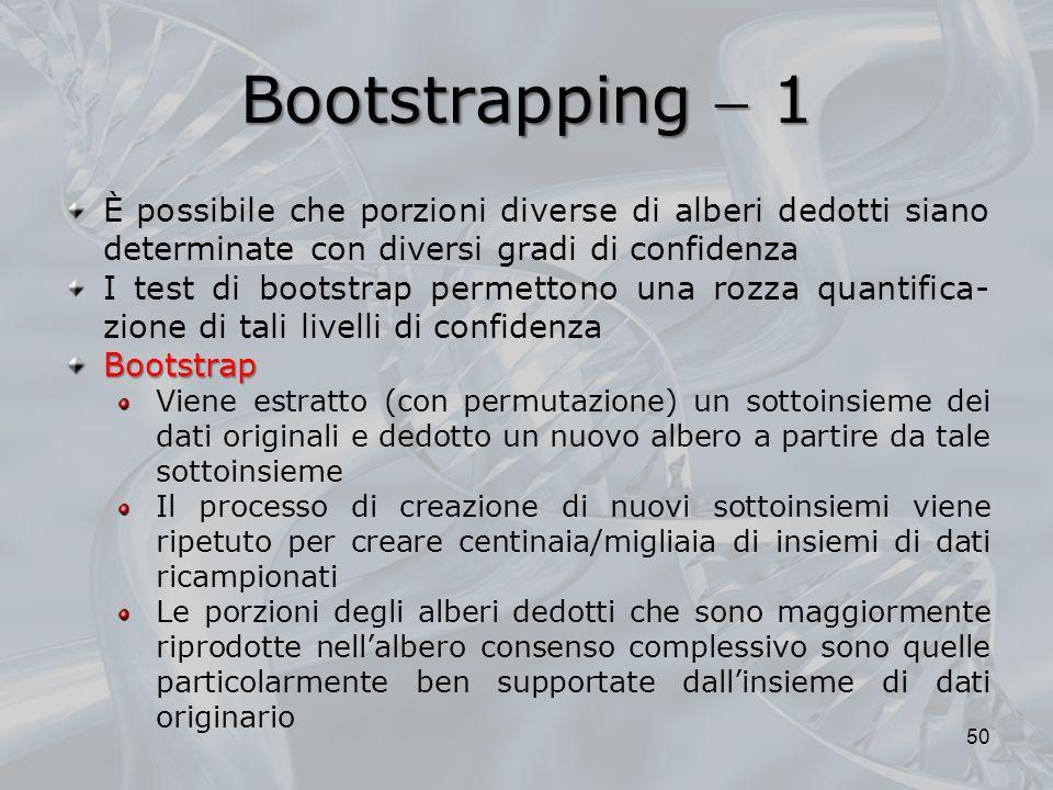 Bootstrapping 1 50 È possibile che porzioni diverse di alberi dedotti siano determinate con diversi gradi di confidenza I test di bootstrap permettono