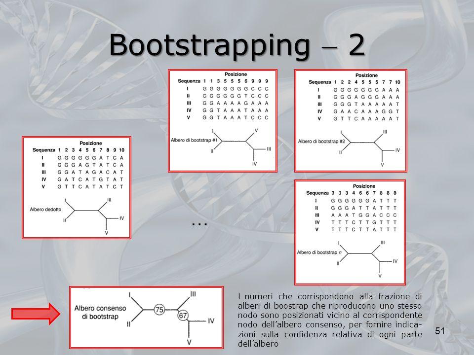 Bootstrapping 2 51 … I numeri che corrispondono alla frazione di alberi di boostrap che riproducono uno stesso nodo sono posizionati vicino al corrisp