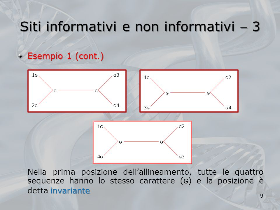 Siti informativi e non informativi 4 Esempio 1 (cont.) non informativi I siti invarianti sono ovviamente non informativi, perché ognuno dei tre possibili alberi che descrivono la rela- zione tra le quattro sequenze postula esattamente lo stesso numero di mutazioni (0) Allo stesso modo, la posizione b è non informativa da una prospettiva di parsimonia, perché si verifica una mutazione in ognuno degli alberi possibili 10