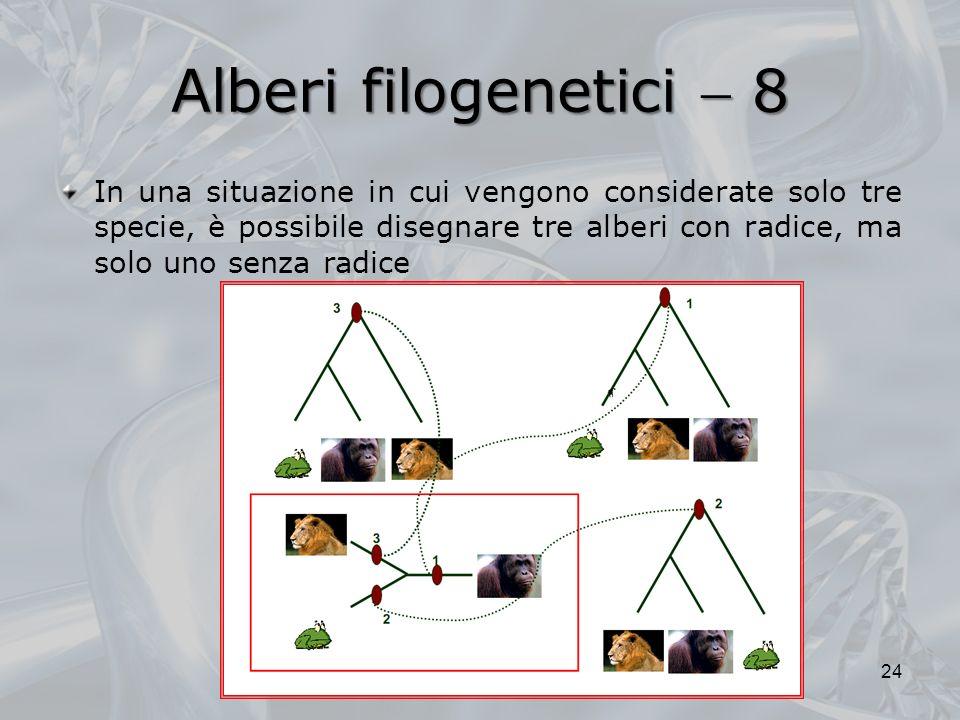 Alberi filogenetici 8 24 In una situazione in cui vengono considerate solo tre specie, è possibile disegnare tre alberi con radice, ma solo uno senza