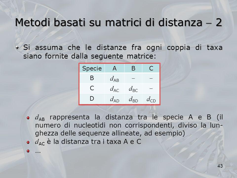 Metodi basati su matrici di distanza 2 43 Si assuma che le distanze fra ogni coppia di taxa siano fornite dalla seguente matrice: d AB rappresenta la