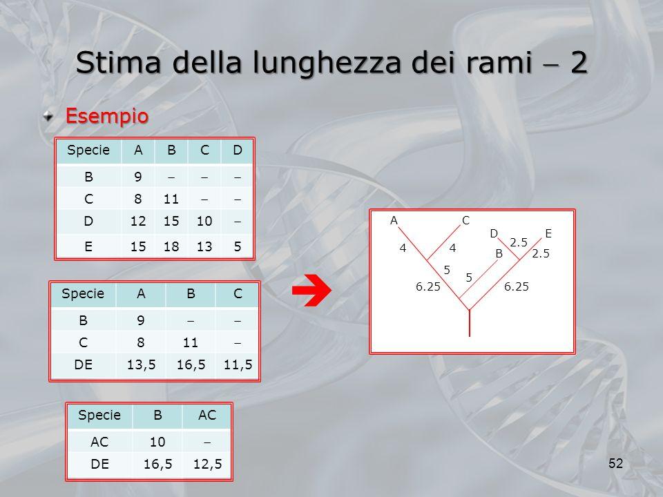 Stima della lunghezza dei rami 2 52 Esempio SpecieABCD B9 C811 D121510 E1518135 SpecieBAC 10 DE16,512,5 SpecieABC B9 C811 DE13,516,511,5 E D B A 2.5 4