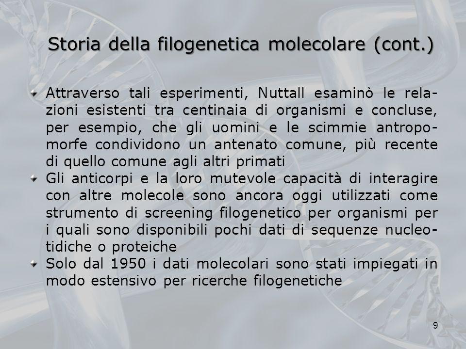 Storia della filogenetica molecolare (cont.) Attraverso tali esperimenti, Nuttall esaminò le rela- zioni esistenti tra centinaia di organismi e conclu