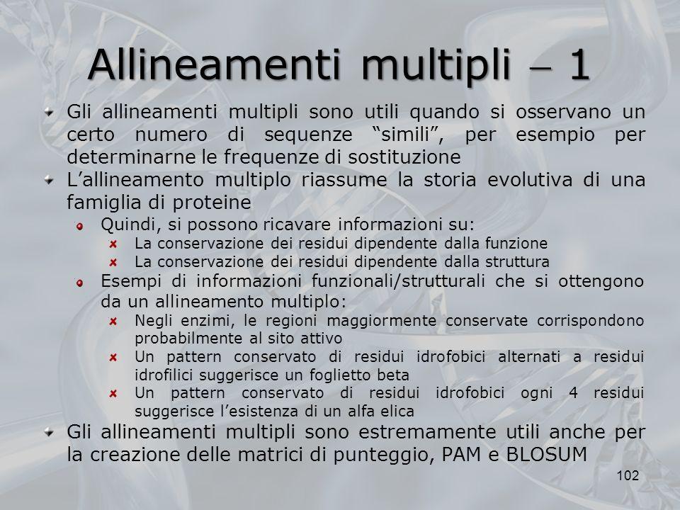 Allineamenti multipli 1 102 Gli allineamenti multipli sono utili quando si osservano un certo numero di sequenze simili, per esempio per determinarne