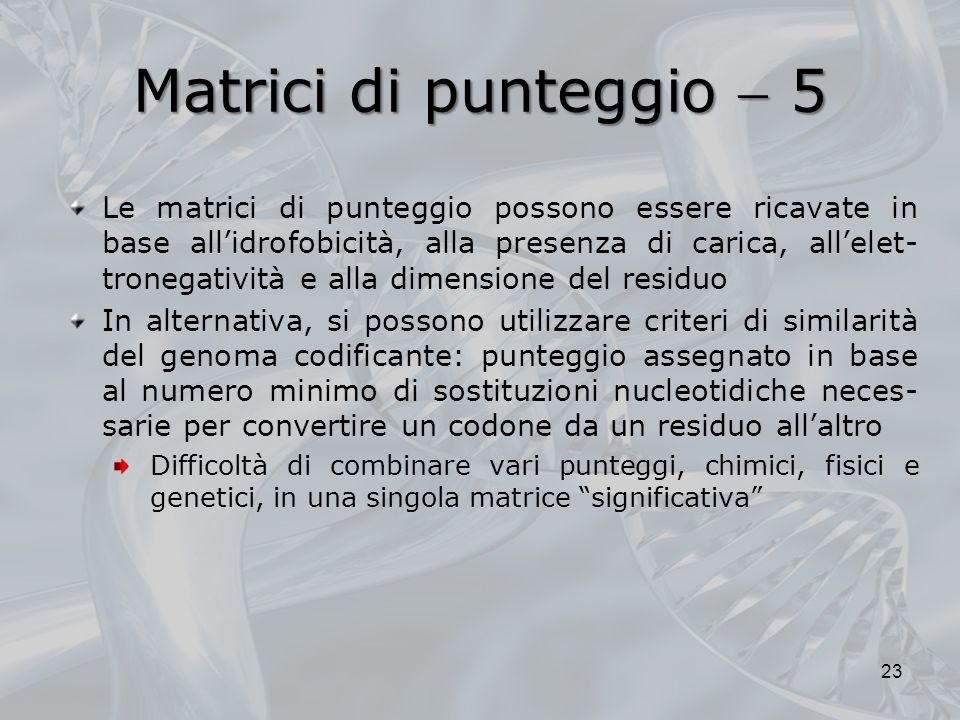 Matrici di punteggio 5 23 Le matrici di punteggio possono essere ricavate in base allidrofobicità, alla presenza di carica, allelet- tronegatività e a