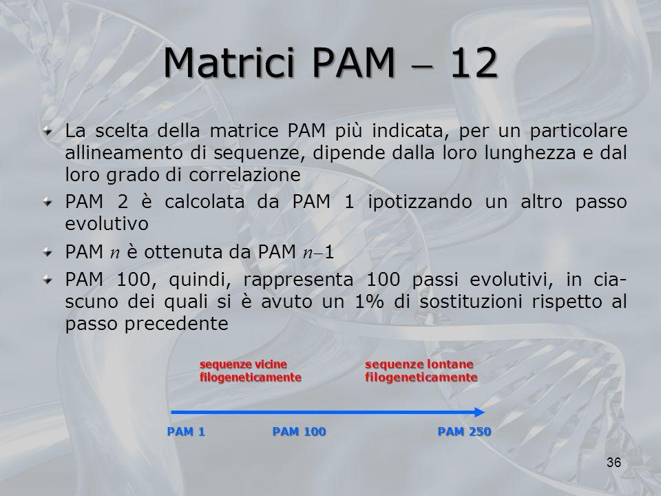 Matrici PAM 12 La scelta della matrice PAM più indicata, per un particolare allineamento di sequenze, dipende dalla loro lunghezza e dal loro grado di