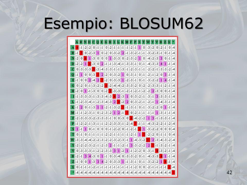 Esempio: BLOSUM62 42
