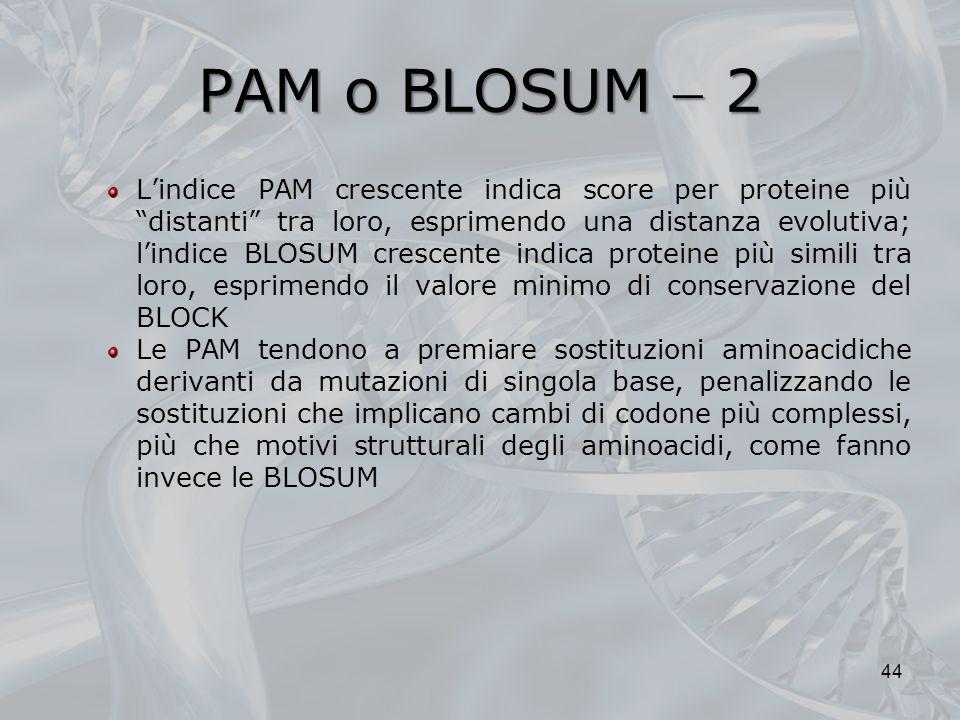 PAM o BLOSUM 2 Lindice PAM crescente indica score per proteine più distanti tra loro, esprimendo una distanza evolutiva; lindice BLOSUM crescente indi