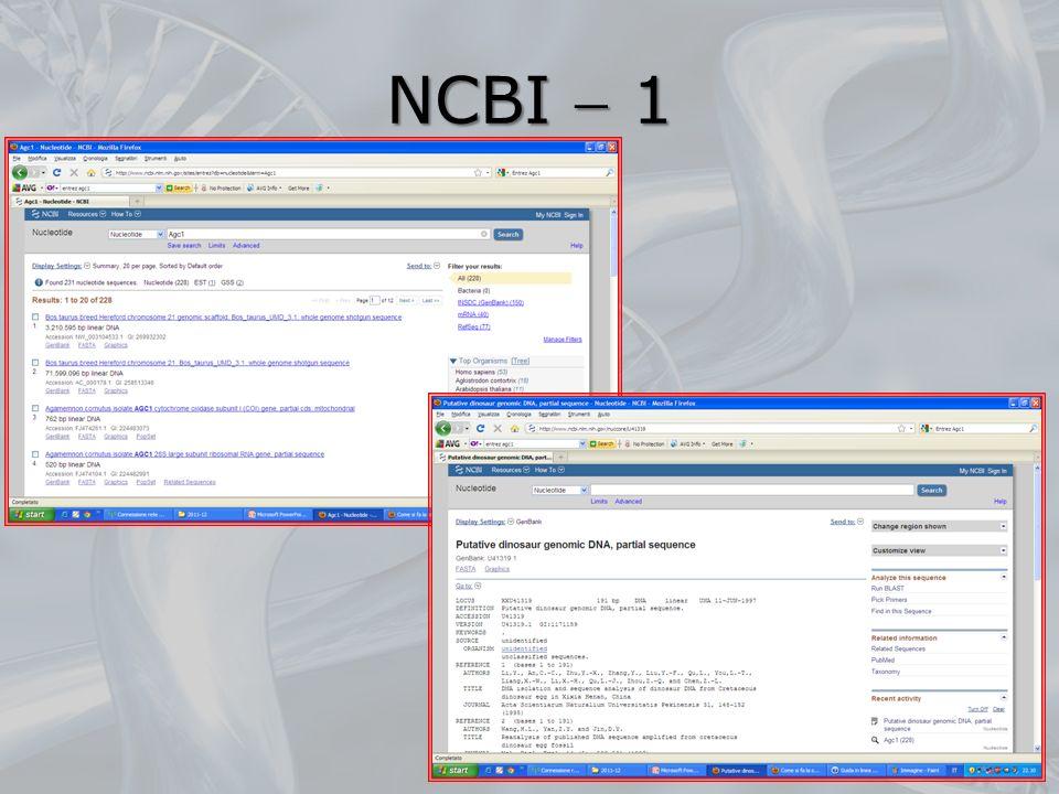 NCBI 1 79