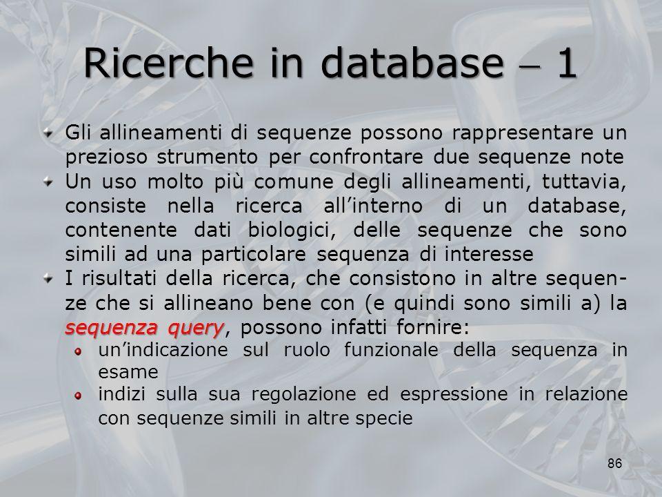 Ricerche in database 1 86 Gli allineamenti di sequenze possono rappresentare un prezioso strumento per confrontare due sequenze note Un uso molto più