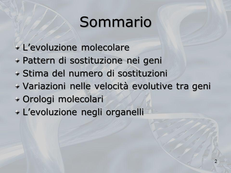 Sommario Levoluzione molecolare Pattern di sostituzione nei geni Stima del numero di sostituzioni Variazioni nelle velocità evolutive tra geni Orologi molecolari Levoluzione negli organelli 2