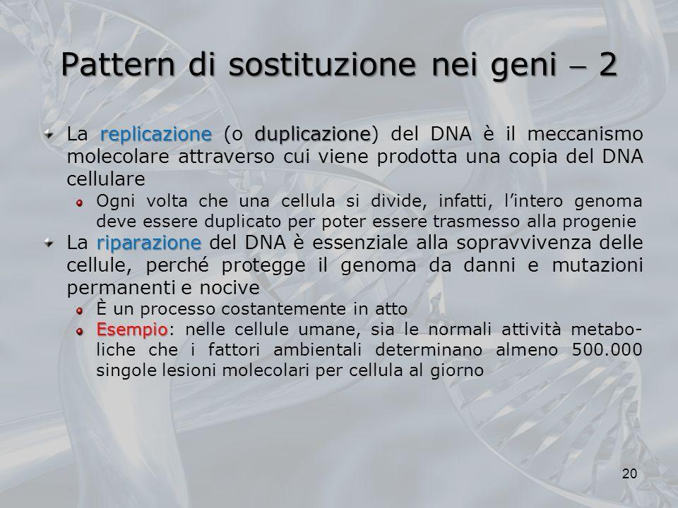 Pattern di sostituzione nei geni 2 replicazioneduplicazione La replicazione (o duplicazione) del DNA è il meccanismo molecolare attraverso cui viene prodotta una copia del DNA cellulare Ogni volta che una cellula si divide, infatti, lintero genoma deve essere duplicato per poter essere trasmesso alla progenie riparazione La riparazione del DNA è essenziale alla sopravvivenza delle cellule, perché protegge il genoma da danni e mutazioni permanenti e nocive È un processo costantemente in atto Esempio Esempio: nelle cellule umane, sia le normali attività metabo- liche che i fattori ambientali determinano almeno 500.000 singole lesioni molecolari per cellula al giorno 20