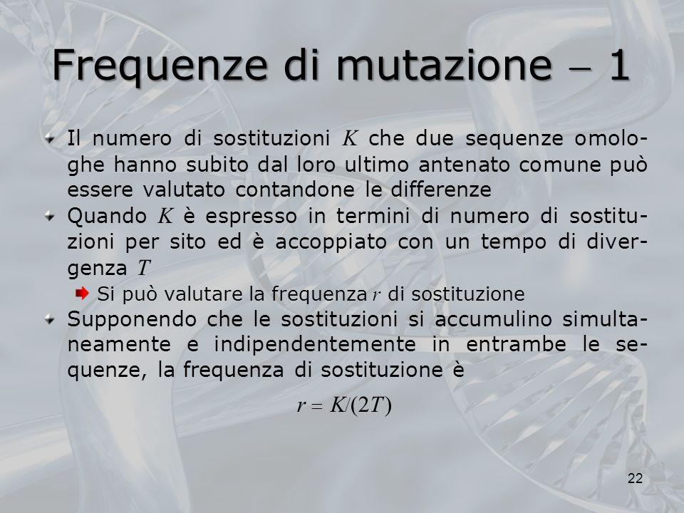 Frequenze di mutazione 1 Il numero di sostituzioni K che due sequenze omolo- ghe hanno subito dal loro ultimo antenato comune può essere valutato contandone le differenze Quando K è espresso in termini di numero di sostitu- zioni per sito ed è accoppiato con un tempo di diver- genza T Si può valutare la frequenza r di sostituzione Supponendo che le sostituzioni si accumulino simulta- neamente e indipendentemente in entrambe le se- quenze, la frequenza di sostituzione è r K (2T ) 22