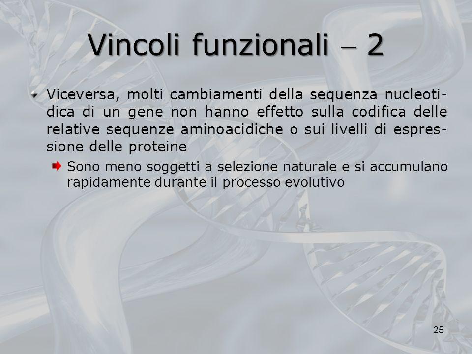 Vincoli funzionali 2 Viceversa, molti cambiamenti della sequenza nucleoti- dica di un gene non hanno effetto sulla codifica delle relative sequenze aminoacidiche o sui livelli di espres- sione delle proteine Sono meno soggetti a selezione naturale e si accumulano rapidamente durante il processo evolutivo 25