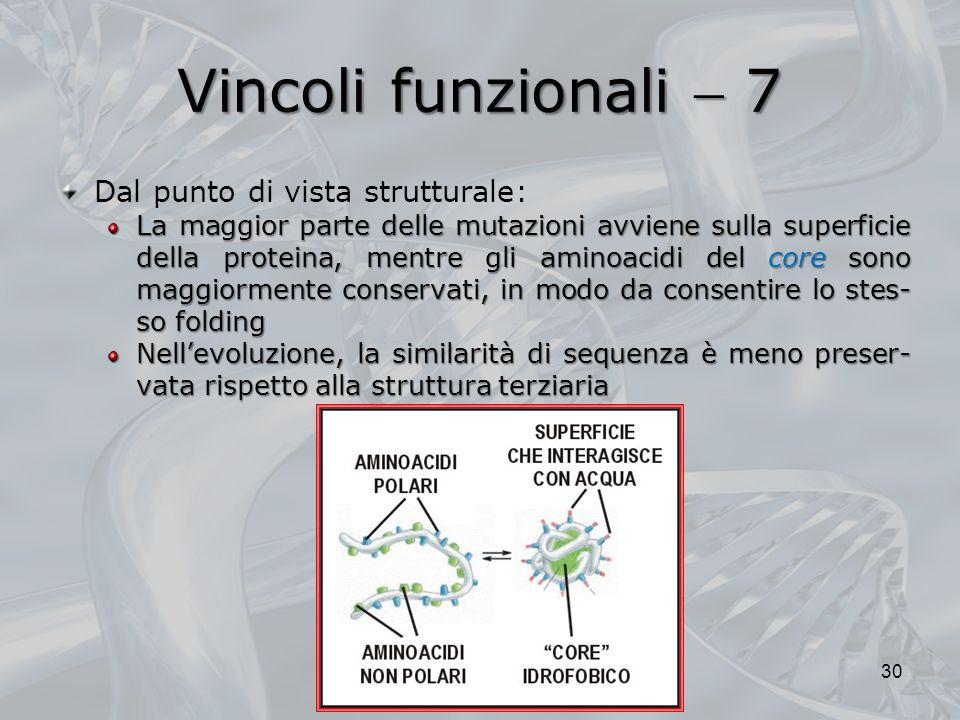 Vincoli funzionali 7 Dal punto di vista strutturale: La maggior parte delle mutazioni avviene sulla superficie della proteina, mentre gli aminoacidi del core sono maggiormente conservati, in modo da consentire lo stes- so folding Nellevoluzione, la similarità di sequenza è meno preser- vata rispetto alla struttura terziaria 30