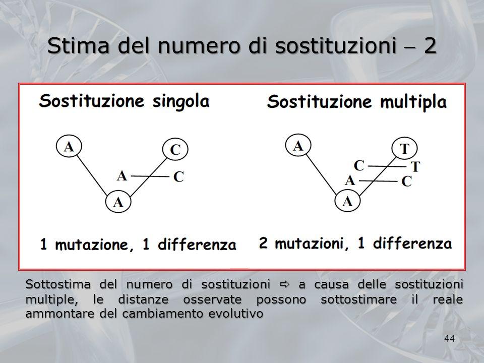 Stima del numero di sostituzioni 2 44 Sottostima del numero di sostituzioni a causa delle sostituzioni multiple, le distanze osservate possono sottostimare il reale ammontare del cambiamento evolutivo