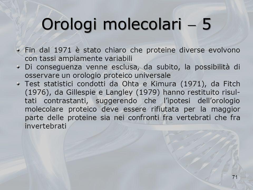 Orologi molecolari 5 71 Fin dal 1971 è stato chiaro che proteine diverse evolvono con tassi ampiamente variabili Di conseguenza venne esclusa, da subito, la possibilità di osservare un orologio proteico universale Test statistici condotti da Ohta e Kimura (1971), da Fitch (1976), da Gillespie e Langley (1979) hanno restituito risul- tati contrastanti, suggerendo che lipotesi dellorologio molecolare proteico deve essere rifiutata per la maggior parte delle proteine sia nei confronti fra vertebrati che fra invertebrati
