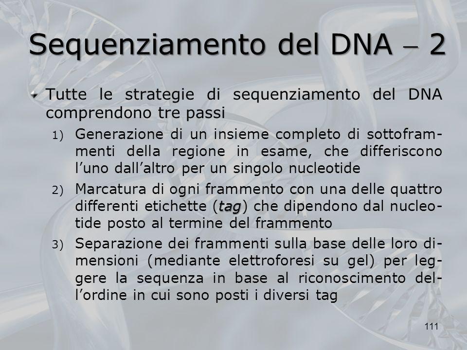 Sequenziamento del DNA 2 Tutte le strategie di sequenziamento del DNA comprendono tre passi 1) Generazione di un insieme completo di sottofram- menti