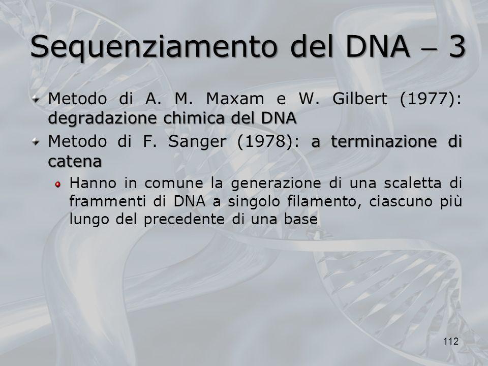 Sequenziamento del DNA 3 degradazione chimica del DNA Metodo di A. M. Maxam e W. Gilbert (1977): degradazione chimica del DNA a terminazione di catena
